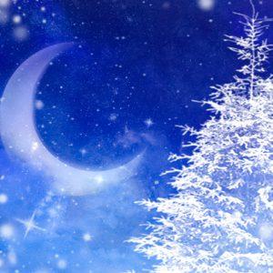 クリスマスツリーと月